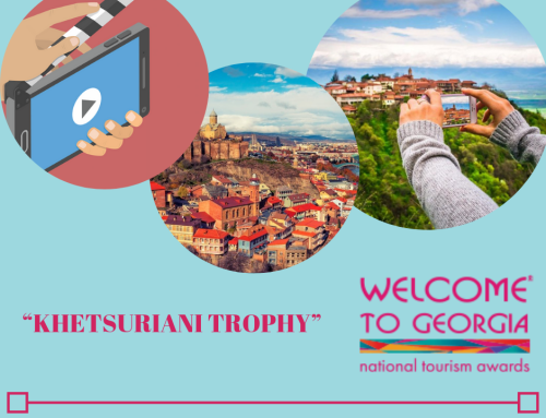 "Special Award: For the Best Creative Work of the Year on Georgia ""KHETSURIANI TROPHY"""